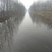 12博手机投注湖泊水体污染12bet官方网址12博bet的主要方法有哪些?